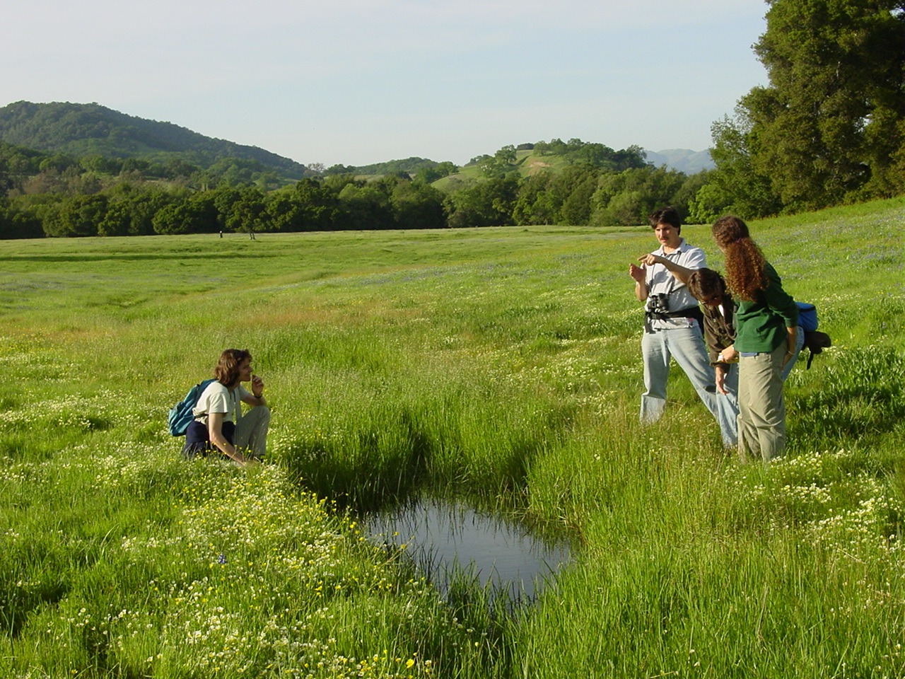 How Our Research Helps Sonoma Valley Thrive