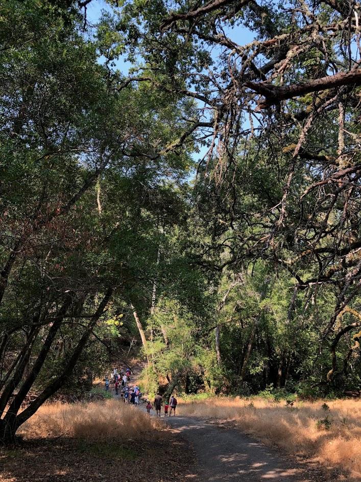 Solstice Saunter @ Sugarloaf Ridge State Park