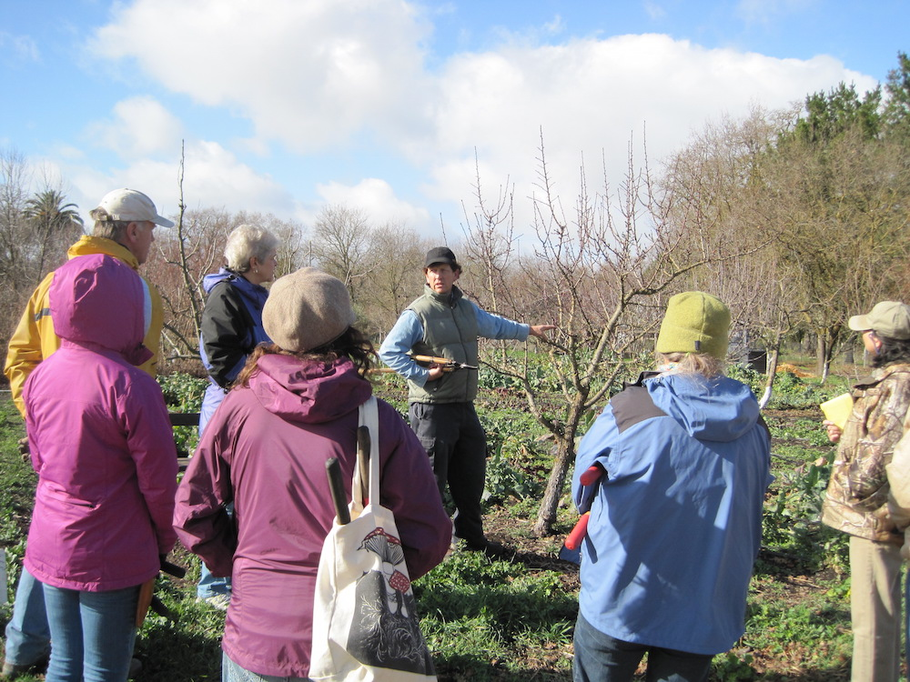 It's Pruning Time at Sonoma Garden Park
