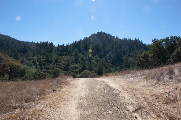 Bill & Dave Hikes: Sugarloaf's McCormick Addition @ Hood Mountain Regional Park, Los Alamos Rd