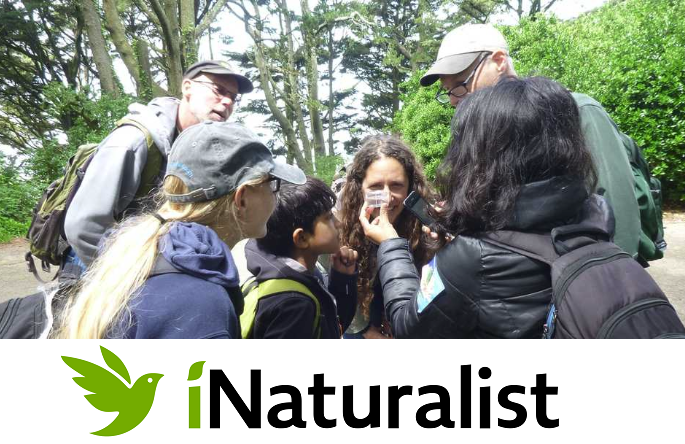 Sugarloaf Bioblitz (w/ City Nature Challenge)! @ Sugarloaf Ridge State Park