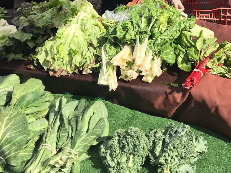 Where to Go for Fresh Local Produce