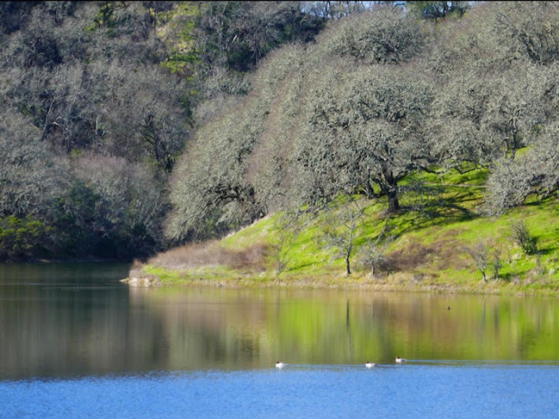 What to Do Now that Sonoma Valley Parks Are Closed