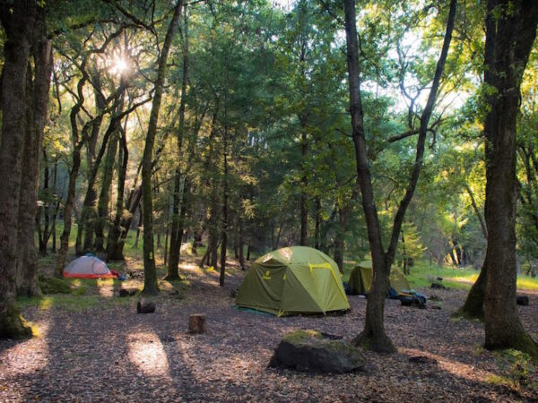 Sugarloaf Campground Reopens with New Guidelines