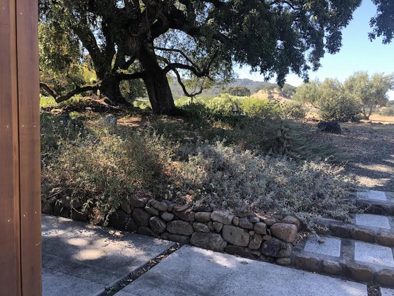 Local Experts Give Fire-Smart Landscaping Advice in Upcoming Workshop