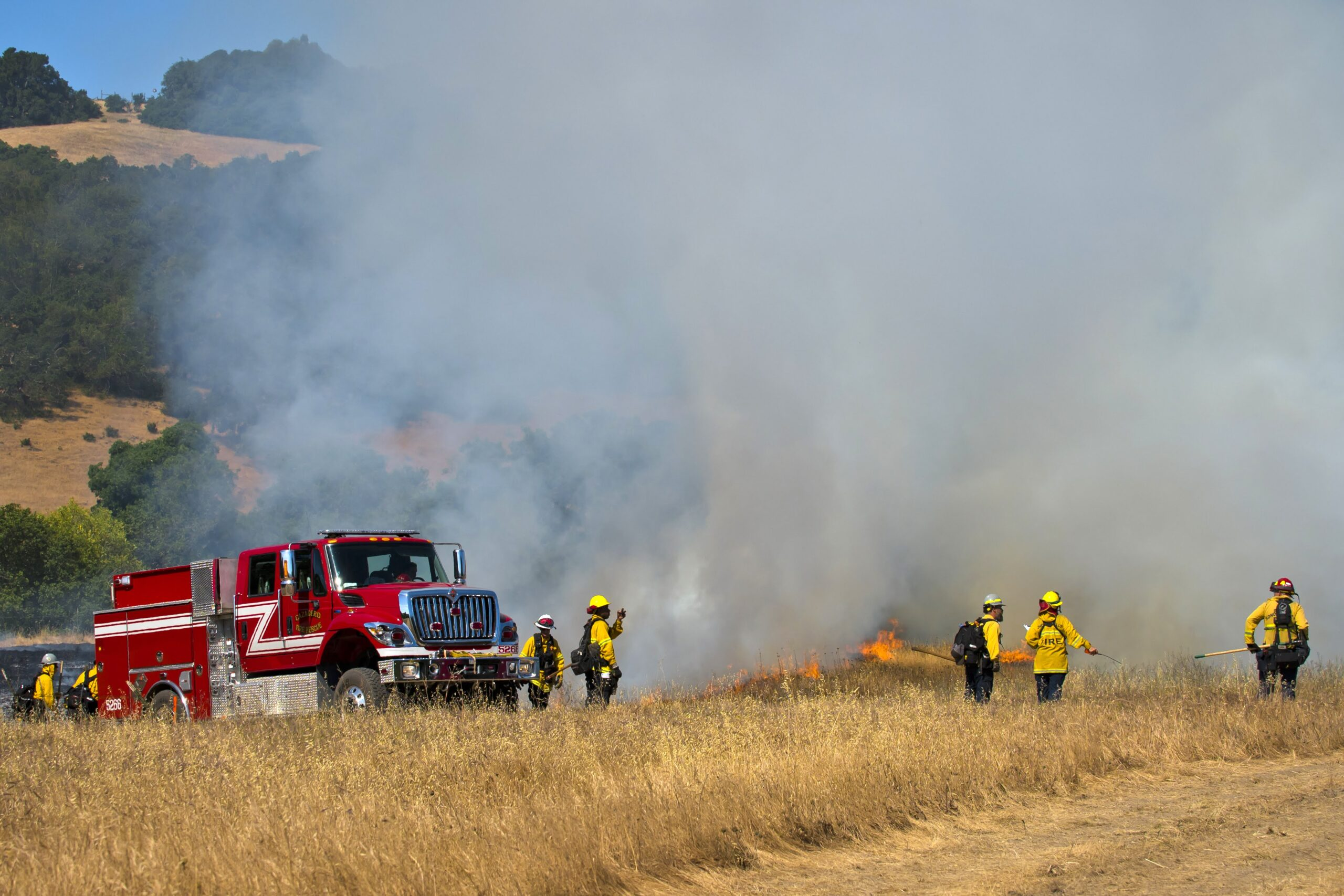 Another successful prescribed burn in the books!